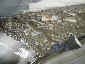 Debris within Longyearbreen